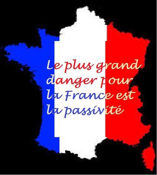 LA FRANCE EN DANGER (suite)