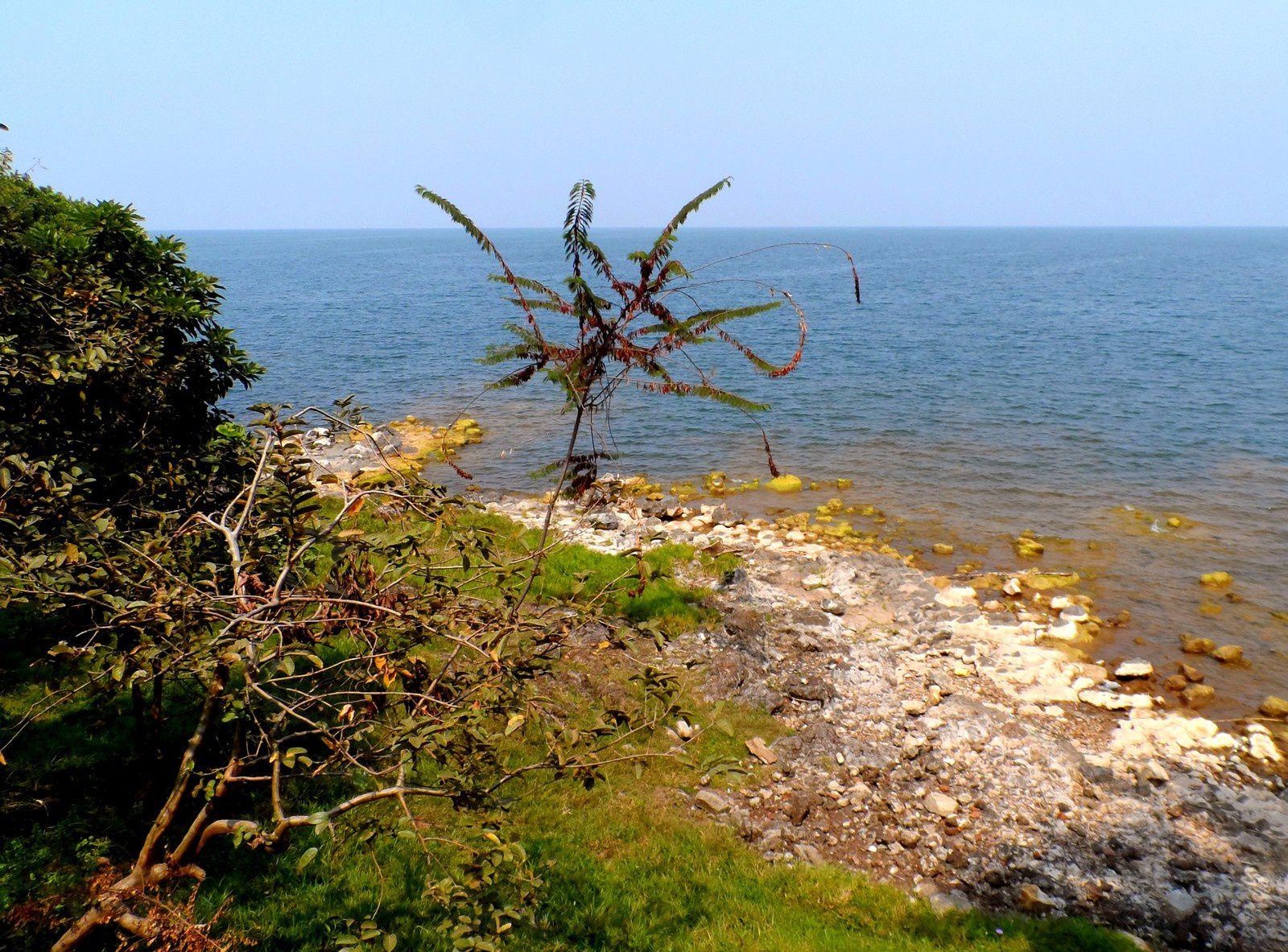 Gisenyi et le lac Kivu : une autre image de l'Afrique