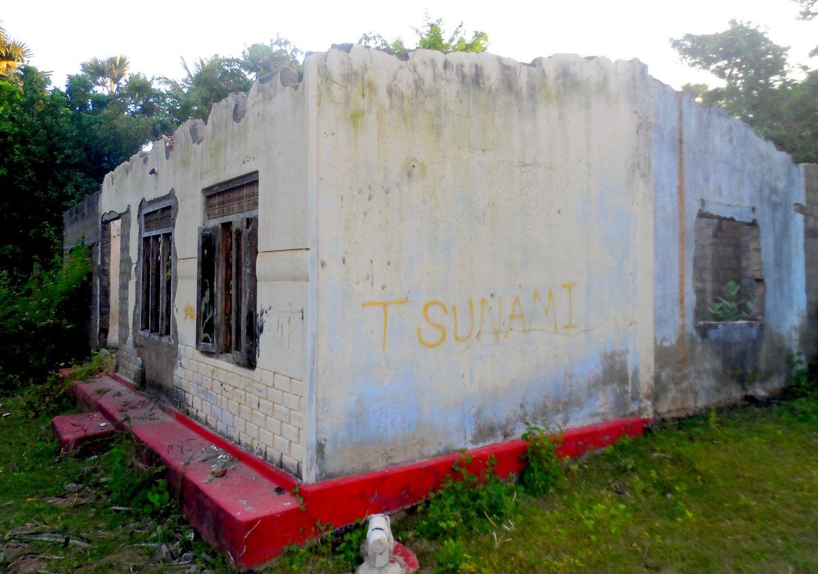 Uppuveli, tsunami, guerre et cocotiers