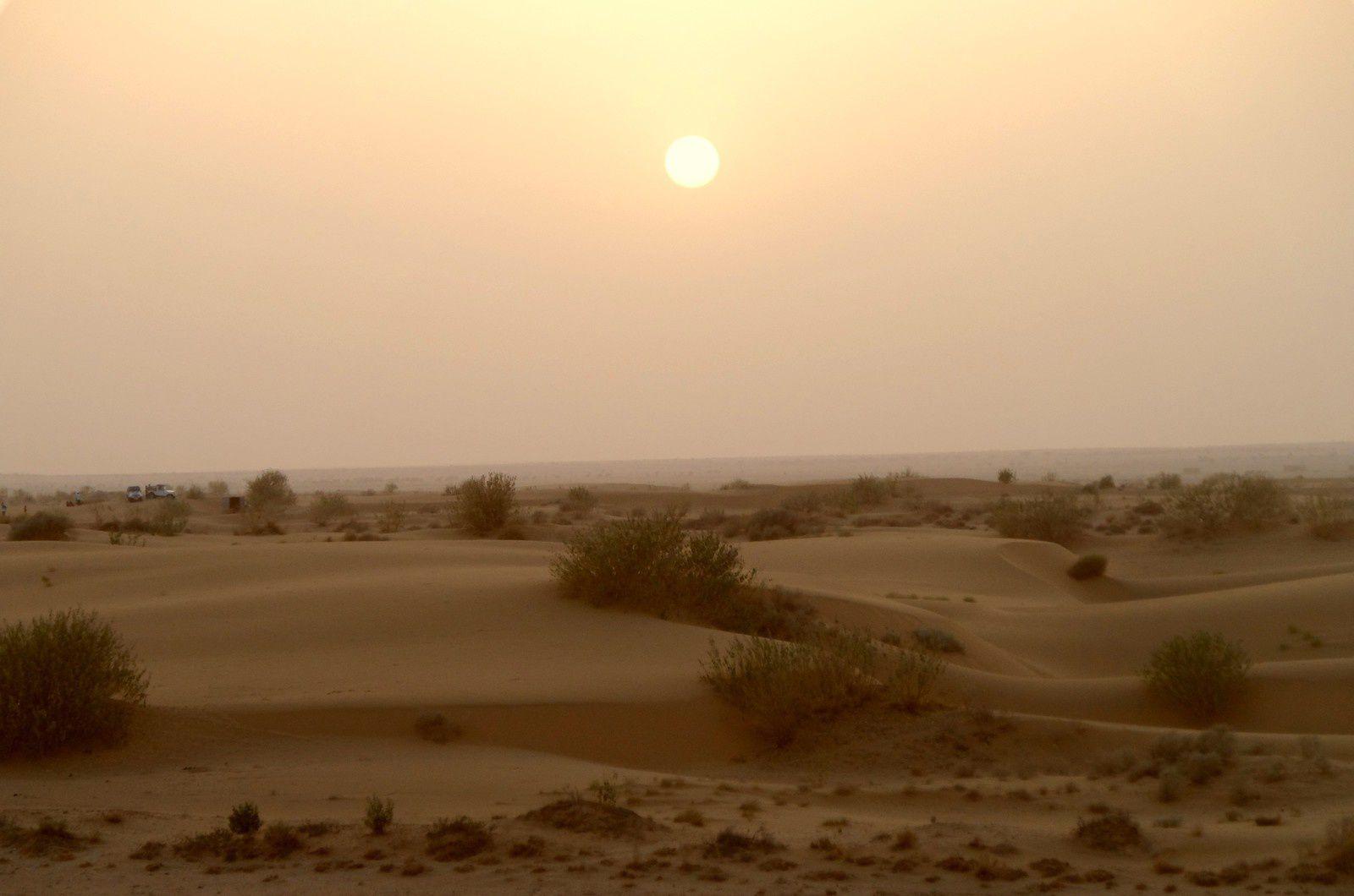 Jaisalmer, fille du désert