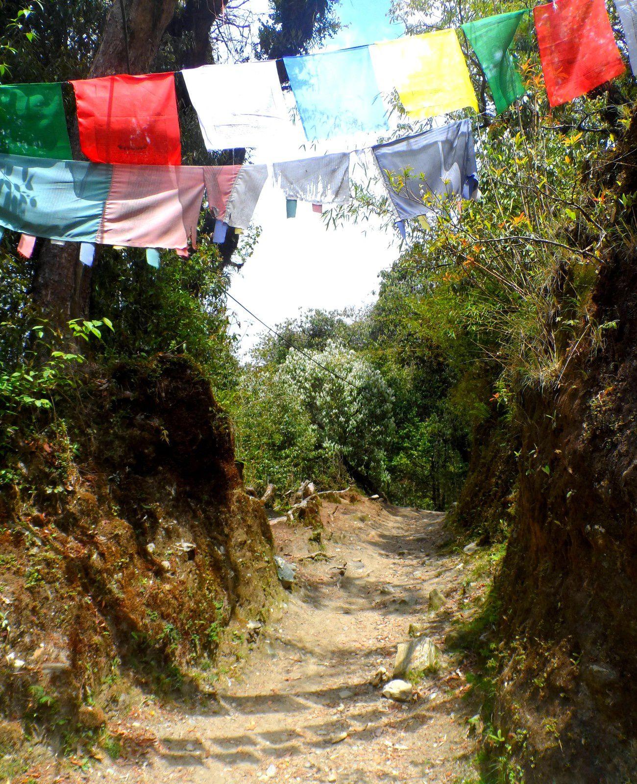 Les premières pentes de l'Annapurna