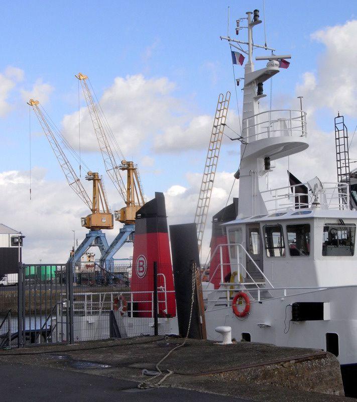 Brest s'est dotée d'une nouvelle criée