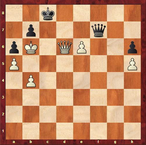 Ronde 9 : Anand - Topalov 1 - 0
