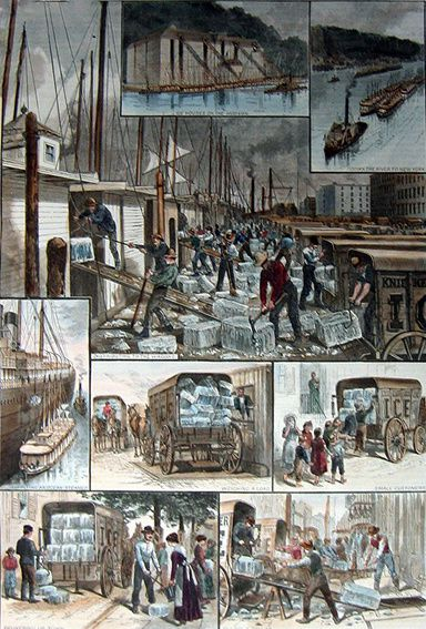 Le commerce de la glace à New-York in Harper's Weekly magazine, 30 août 1884. Source Wikipedia.