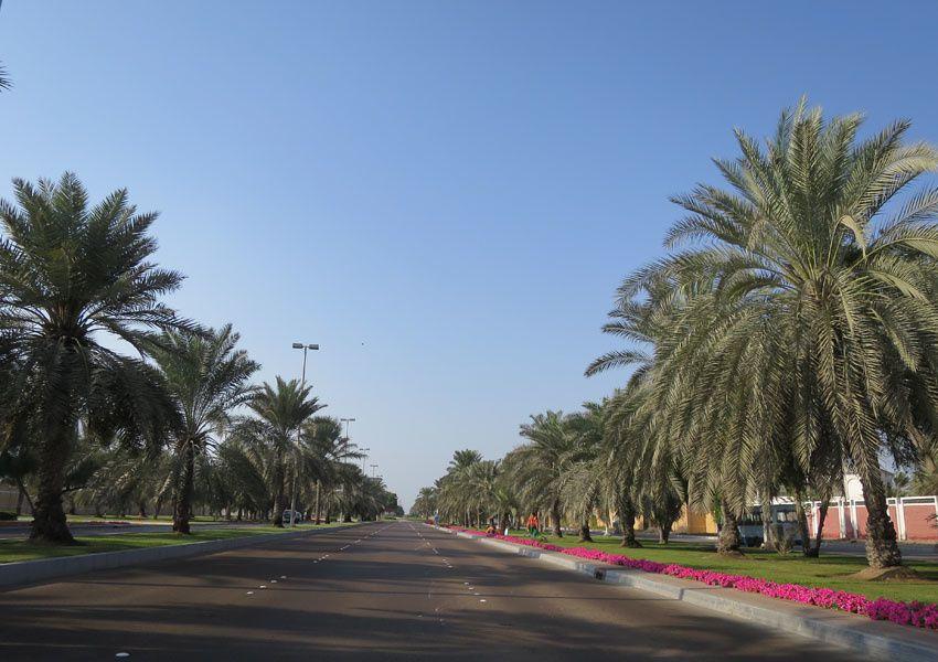 Agréable avenue bordée de luxueuses résidences. Ph. Delahaye.