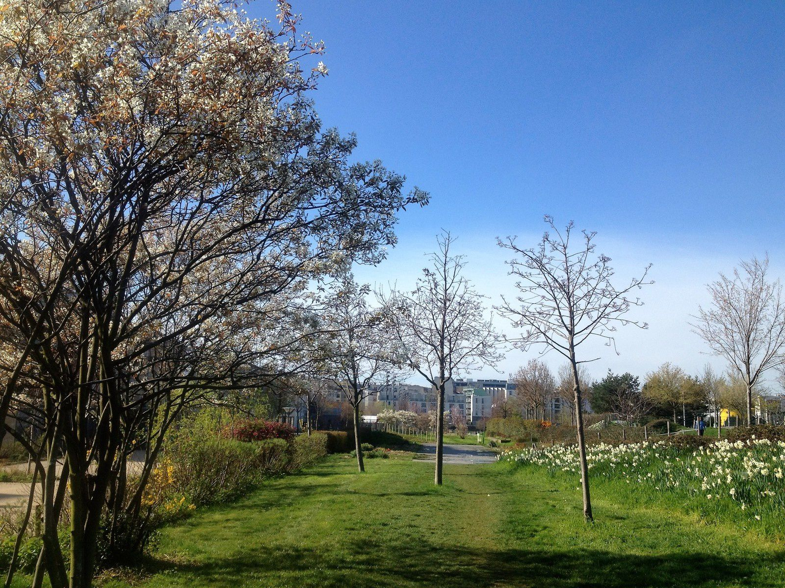 Photos aux jardins éole 10 avril 2016 c'est enfin le printemps
