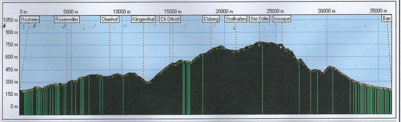 VTT Mont Ste Odile - 30 novembre 2014