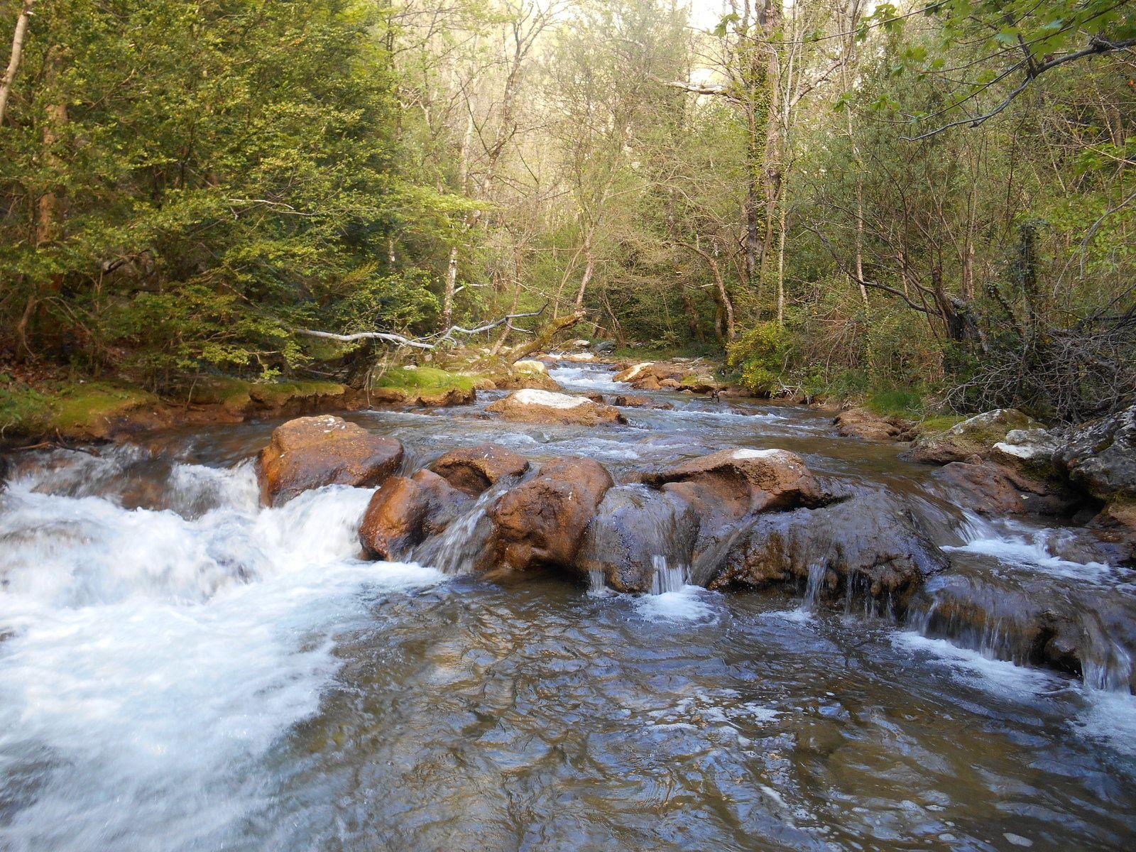 Opération rivières propres ( samedi 11 avril)