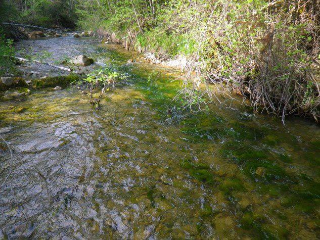 Les rivières du mardi