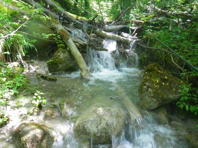 Le petit ruisseau encombré