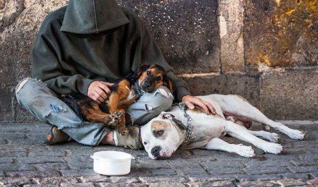 Le sans domicile fixe