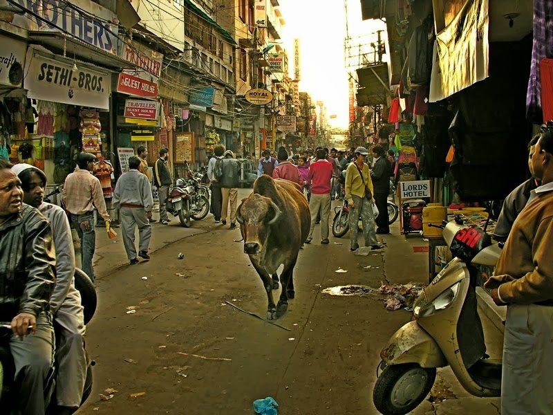 Mumbai ou l'enfant perdu