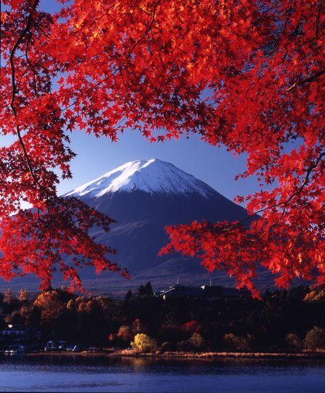 Japon #8