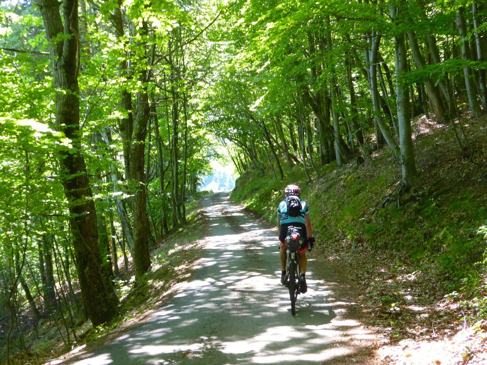En route pour le bikepacking