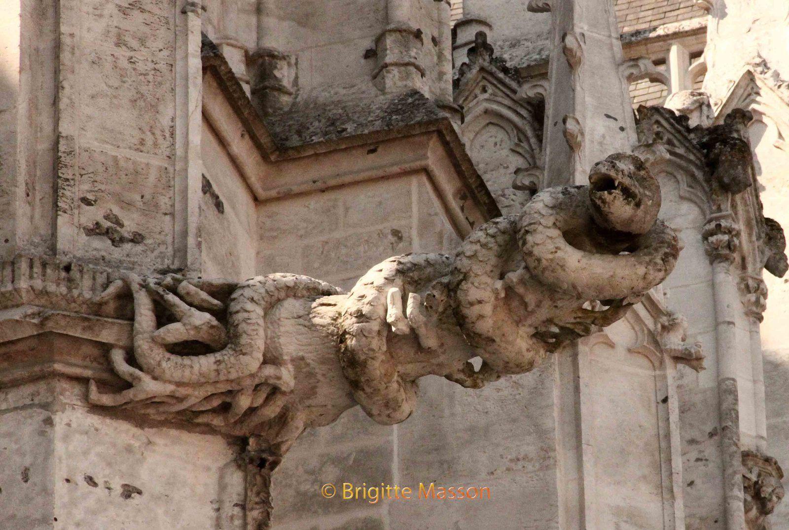Cathédrale d'Evreux - Serpent