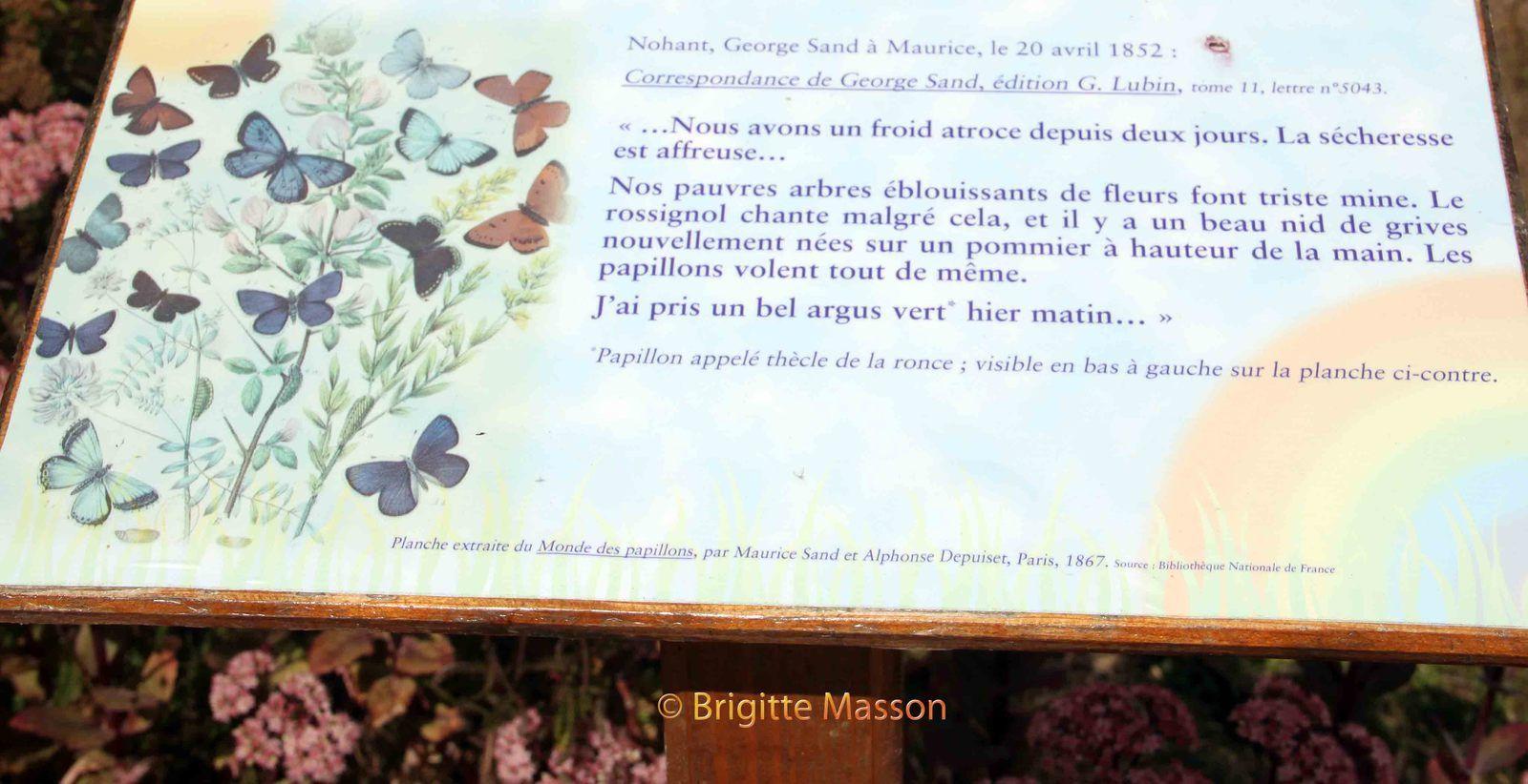 Lettre à Maurice - 1852