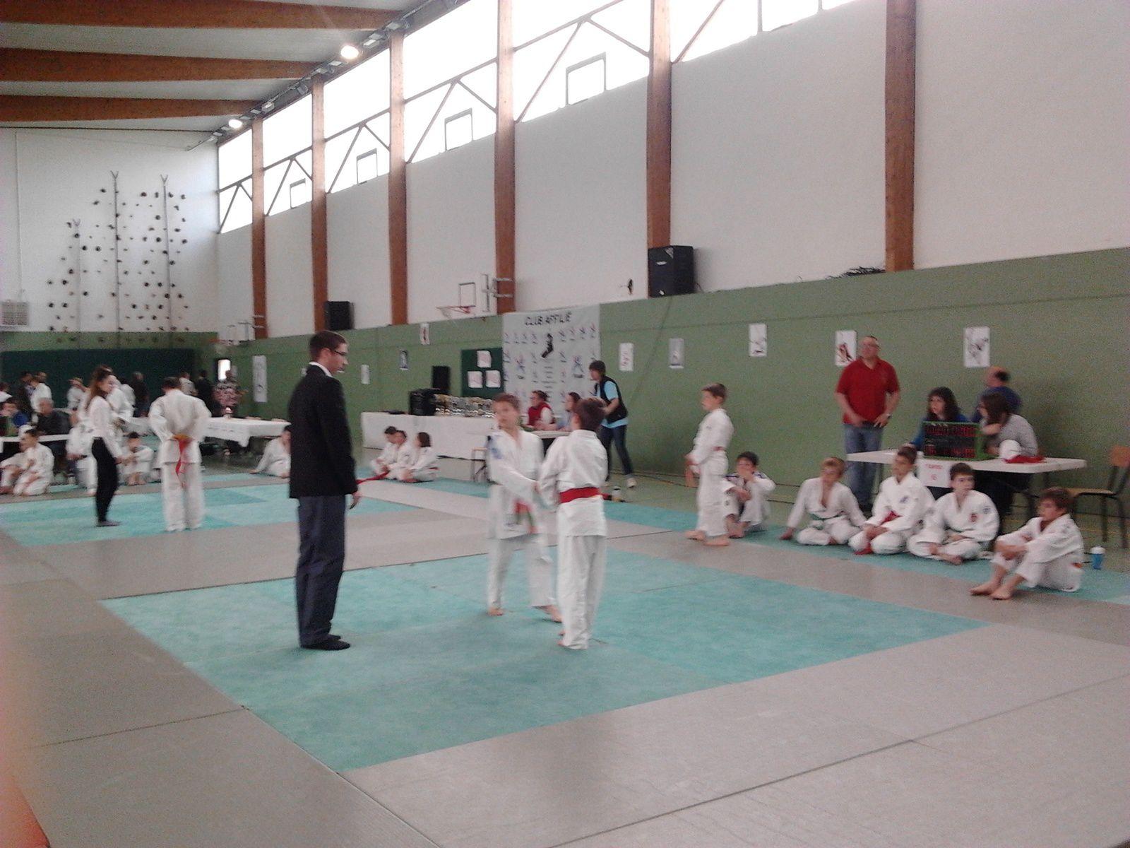 Tournoi du judo club d'ANIZY LE CHATEAU le 29/05/2014