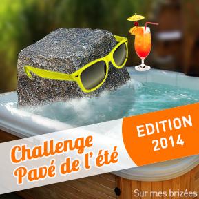 Challenge Pavé de l'été !