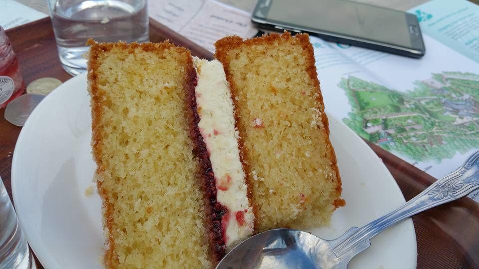 Coucher de soleil Port Isaac, crique, jardin fleuri ,cream scones, sponge cake et un petit coucou bien emmitouflée!