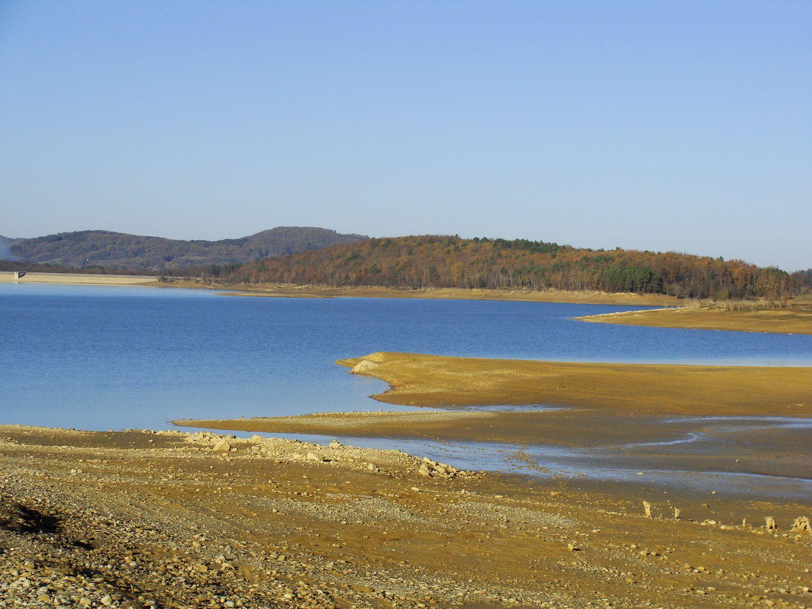 Lac de Montbel : couleurs hiver