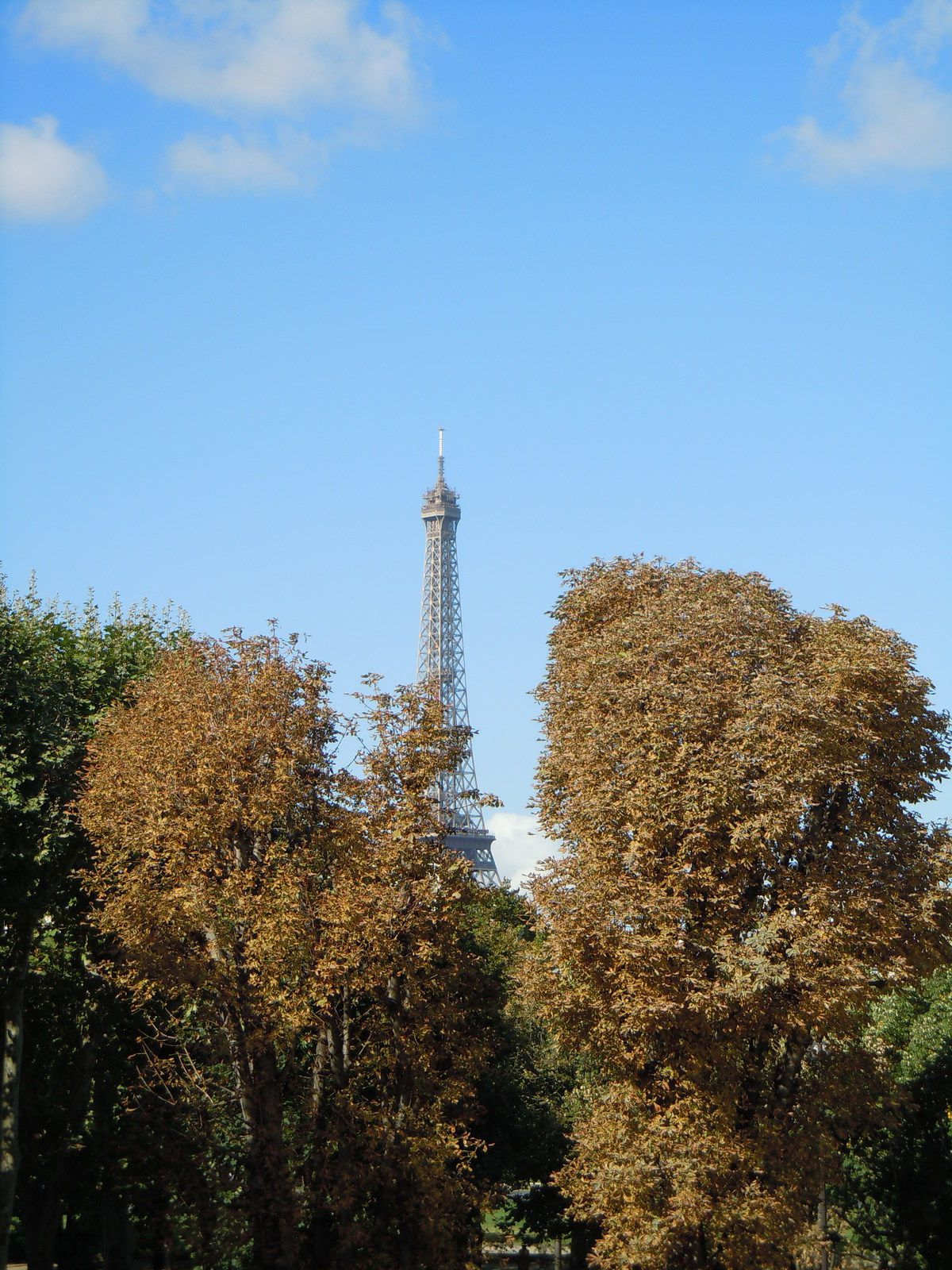 Photo : La Tour Eiffel, Paris.