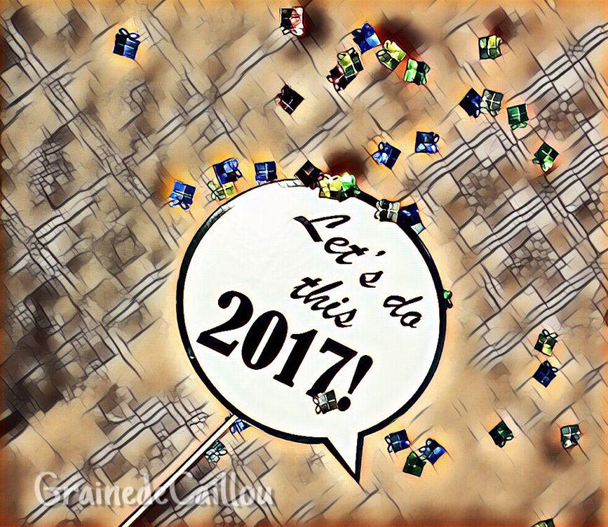 Bye Bye 2016... Go 2017 !
