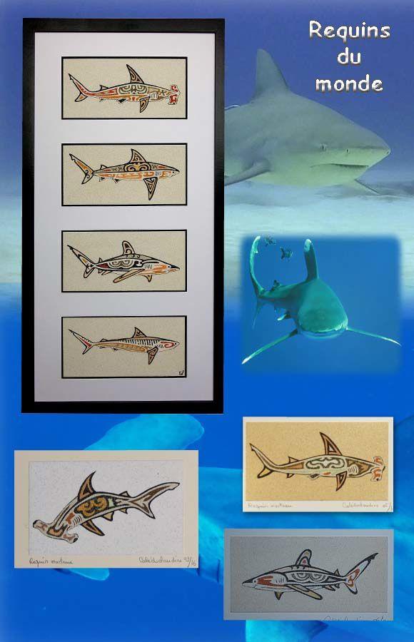 Requins - Shark