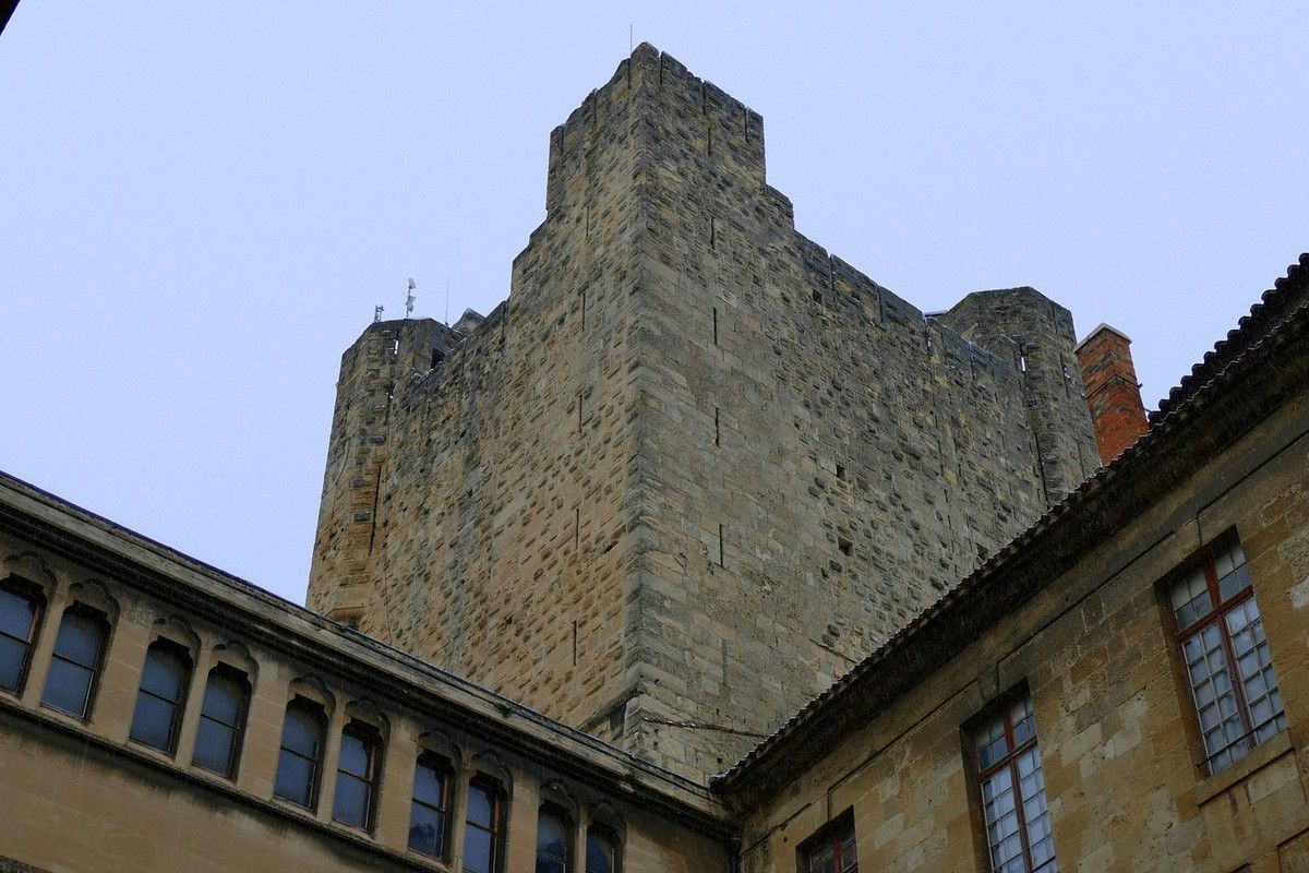 Autour du Palais des Archevêques de Narbonne (janvier 2016, images personnelles)