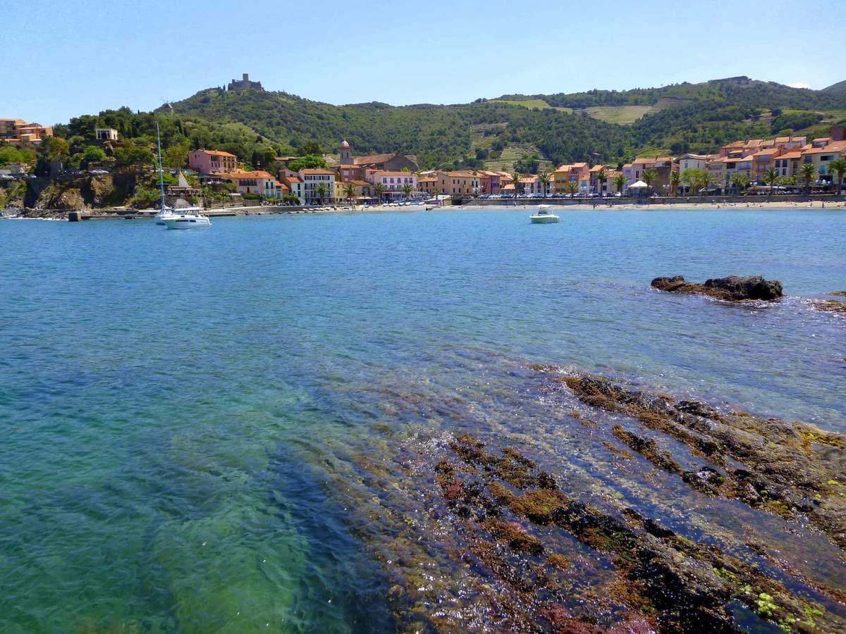 Les eaux cristallines de l'anse de Collioure (avril 2014, images personnelles)