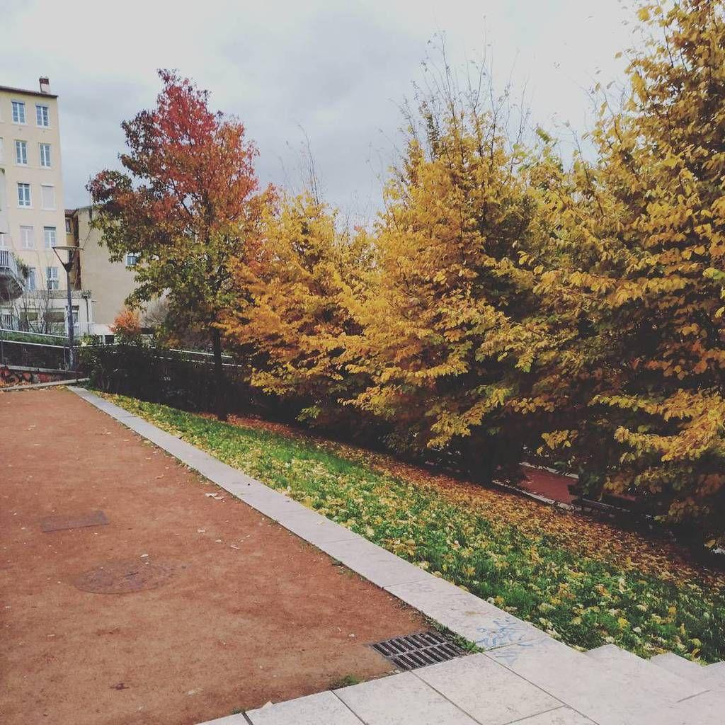 Lyon, jour 2 et retour