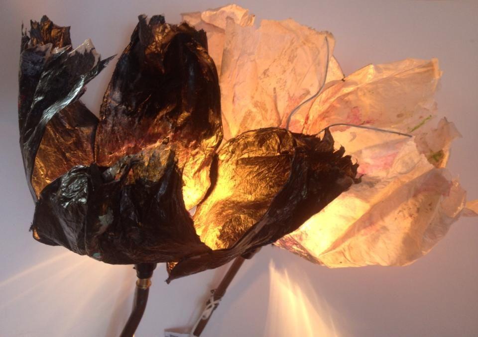 Lampe Fleur Duo De Pavot Lumineux Noir Et Blanc Rose Recele D
