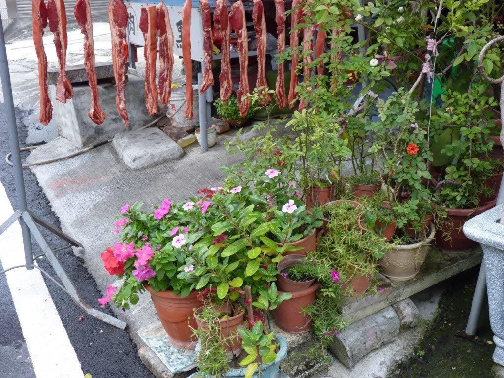 la viande sèche au bord de la rue poétiquement accompagnée de fleurs!!