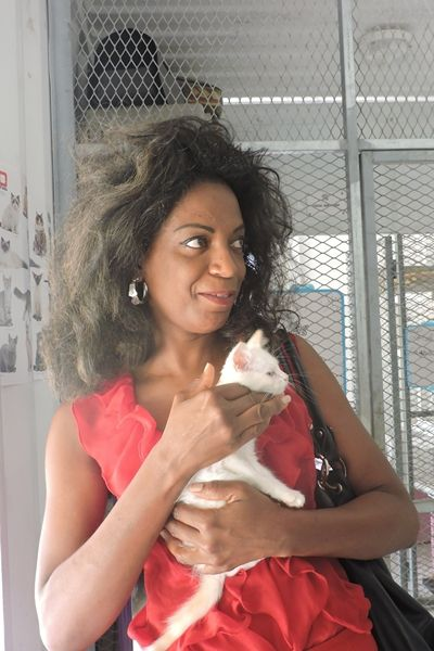 YAOURT - magnifique femelle chaton - 2 mois - adoptée