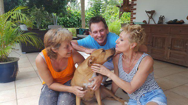 Passer de la rue, au refuge, à une super famille aimante...... PATY l'a fait !