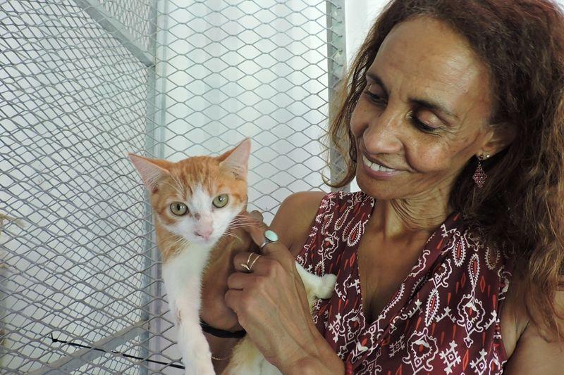 MALIBU s'appelle TI MALI - chaton mâle - ,é le 15/09/2016 - adopté à 4 mois