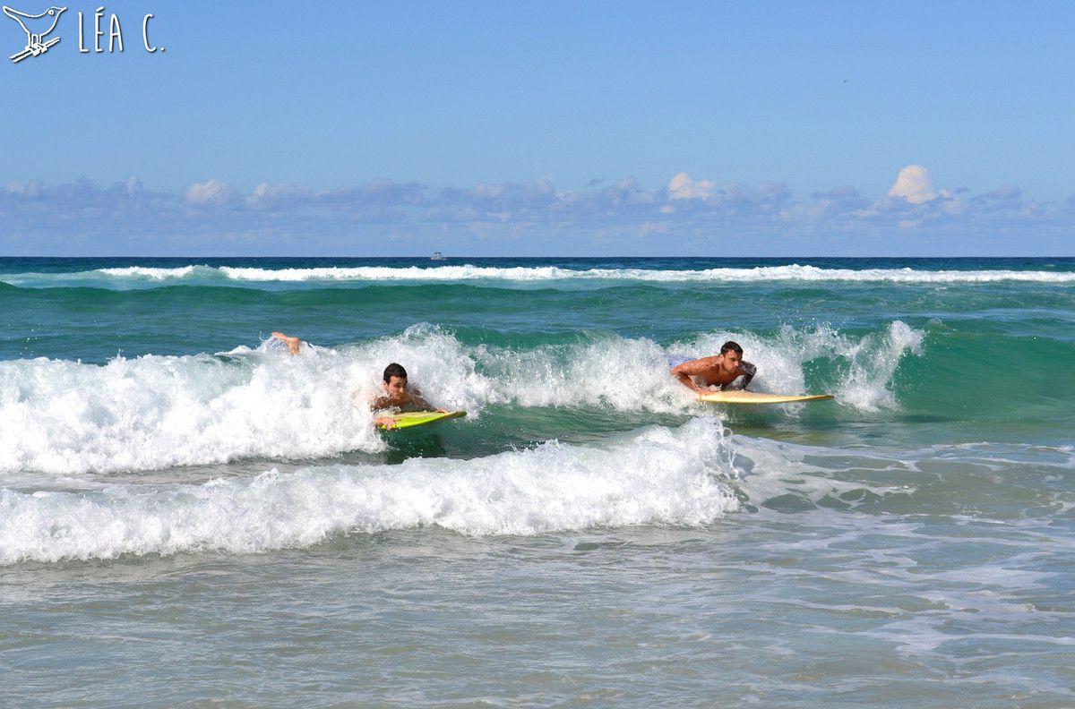 Gold Coast #2
