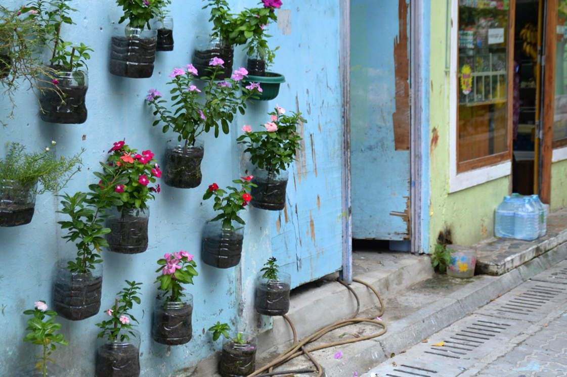 Flower wall in Vilimalé with recycled 5L-water bottles - North Malé atoll