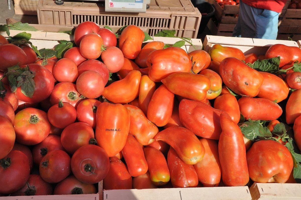 La Cornue des Andes et la Tomate de Pays ont été très appréciées