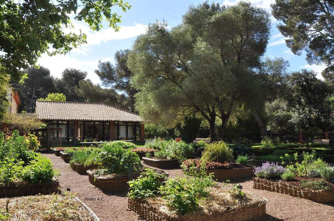 Six fours le jardin de la maison du cygne site for Cendres dans le jardin