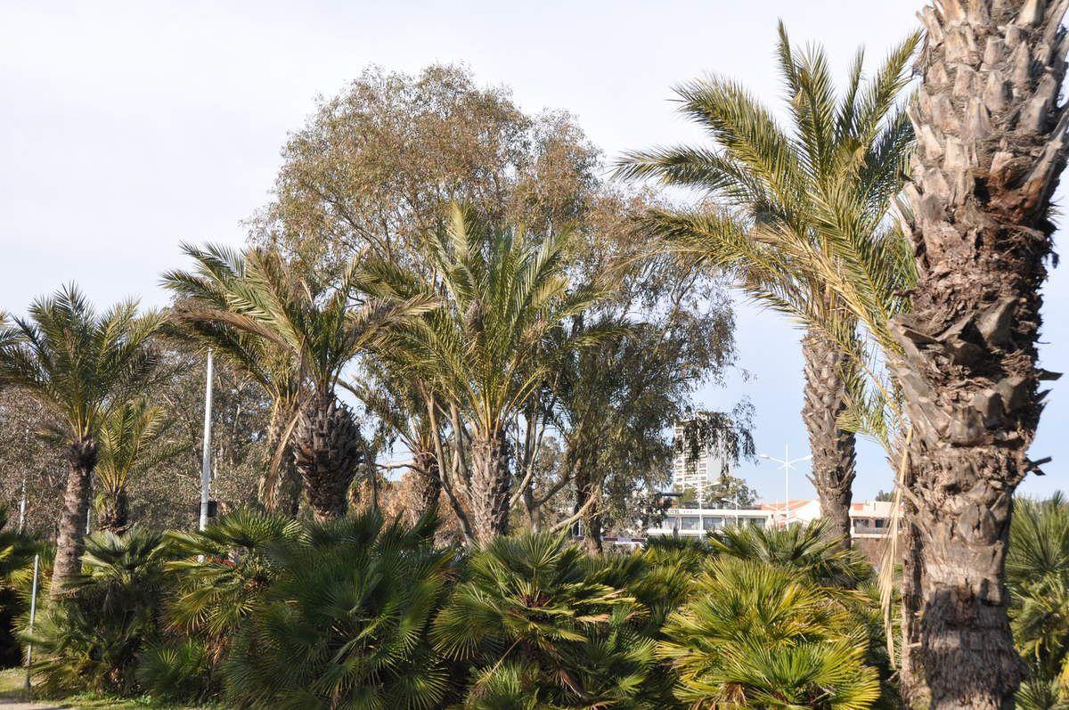 La Seyne/Mer : Le Parc Fernand Braudel, vitrine de la 2è Ville du Var