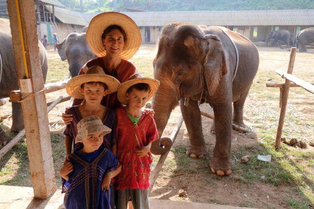 Ballade avec les éléphants