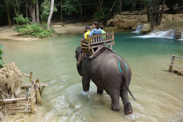 A sensational day with elephants and waterfall