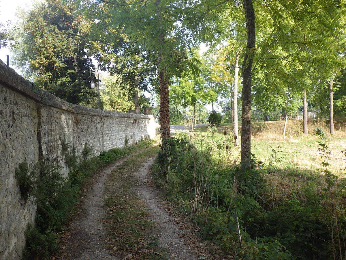 Le chemin des fossés à Hautot sur Seine
