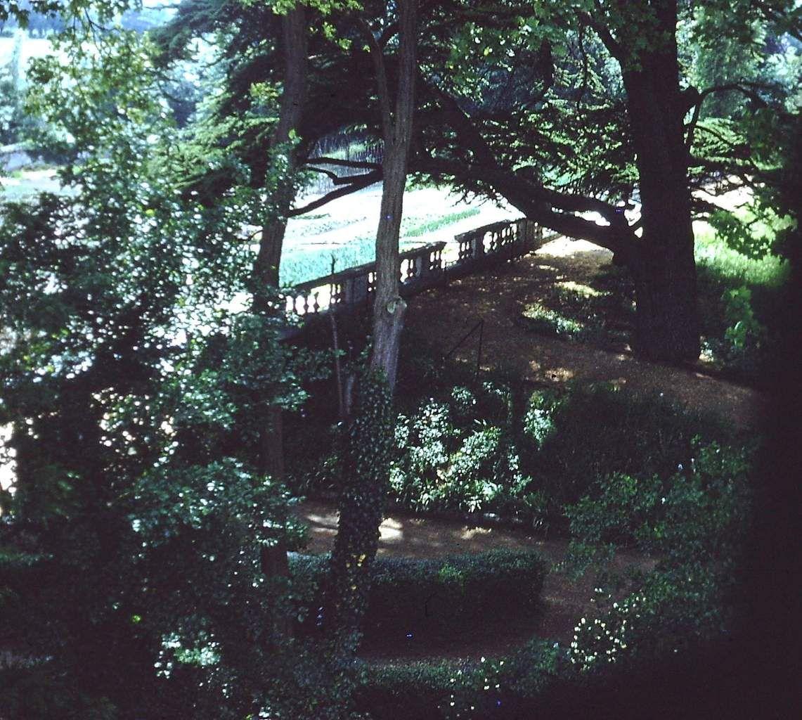 Le parc du Château d'Hautot sur Seine