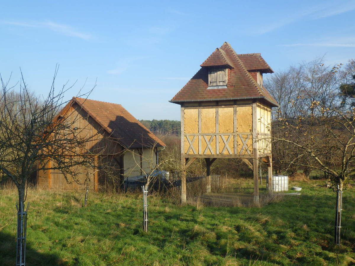 le chemin neuf et le bois communal d'Hautot sur Seine