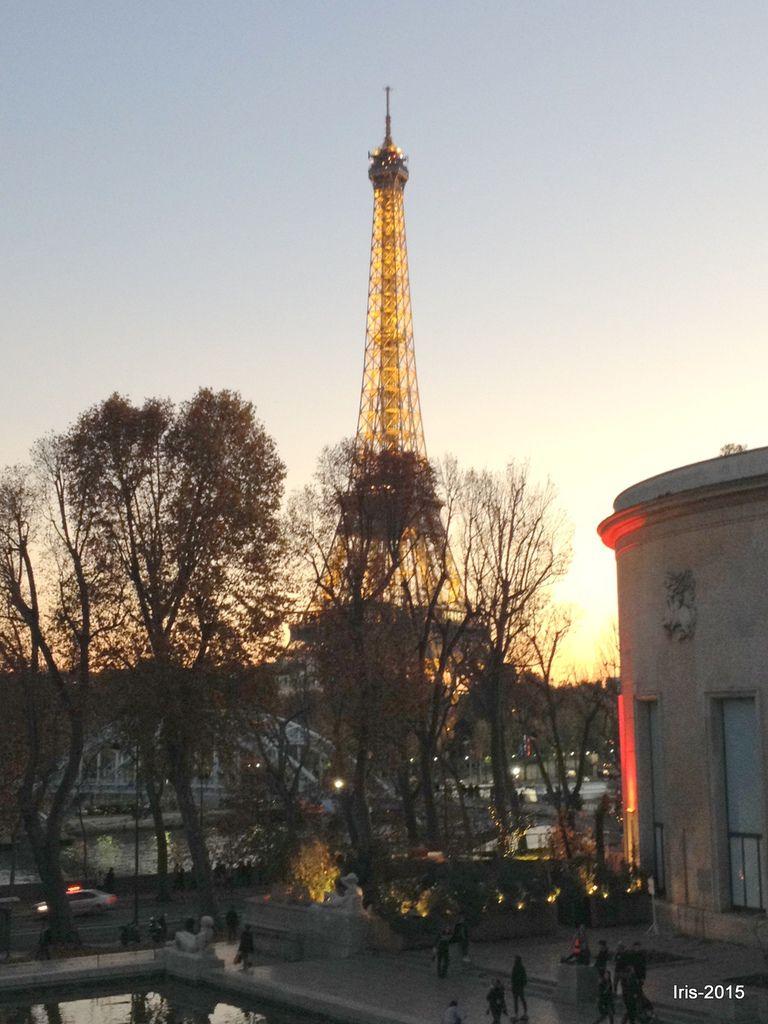 Tout Eiffel vue du Musée de l'homme