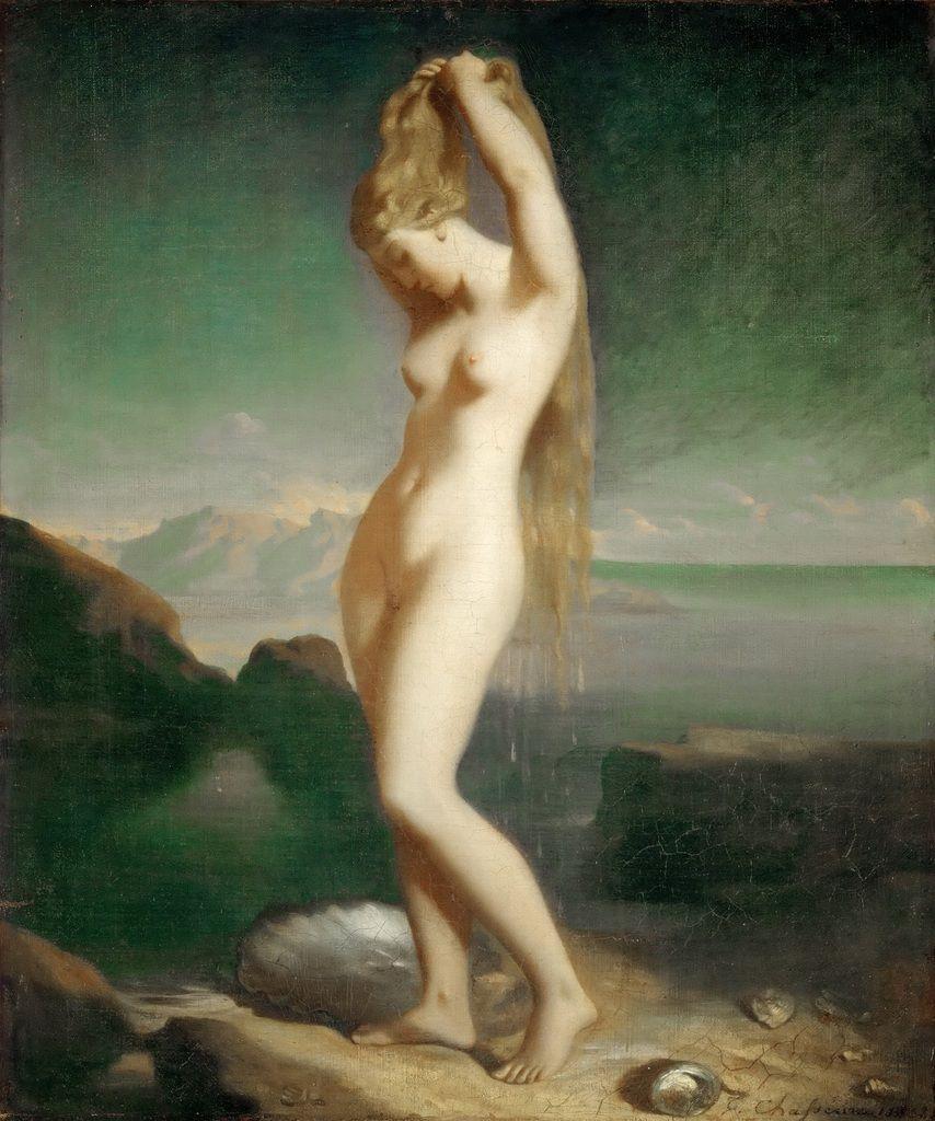 Venus anadiomena, Chasseriau, 1838