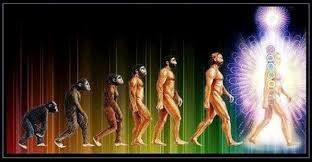 La Venue de l Homo Luminous