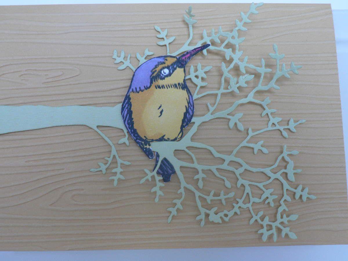 Un colibri sur une branche  pour stampin up
