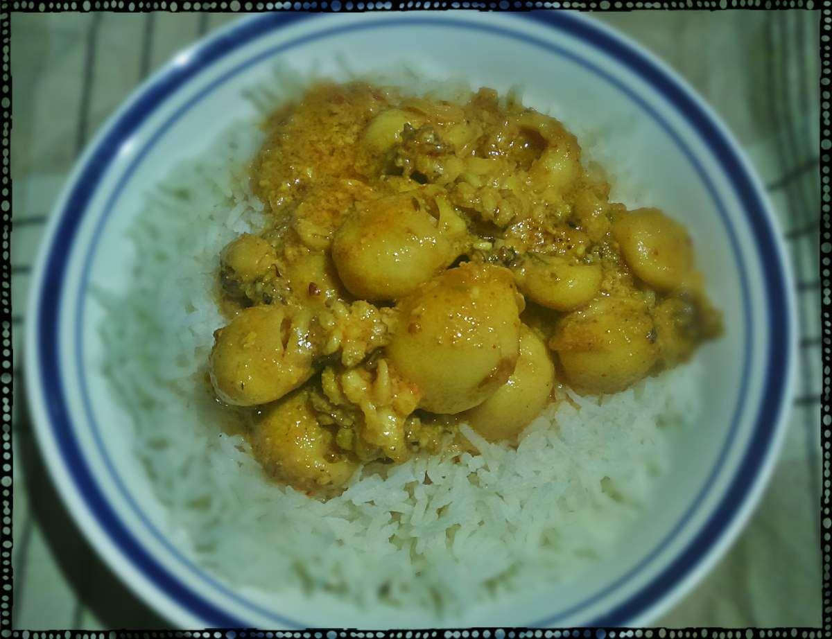 Curry de seiches